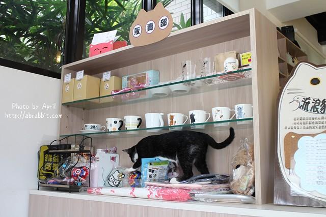 29949363312 7103691f06 z - 【熱血採訪】[台中]朵喵喵咖啡館--愛貓人士請進,這裡是貓咪中途之家、台中貓餐廳、貓咖啡廳@東區 自由路(已歇業)