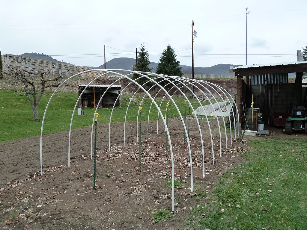 by Hoop house - high tunnel made out of 3/4 pvc pipe. | by & Hoop house - high tunnel made out of 3/4 pvc pipe. | Flickr