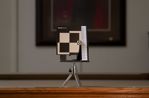 lenscal | by Tiffany Joyce