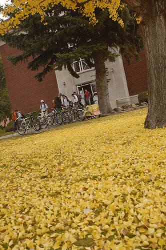 Fall | by Central Washington University
