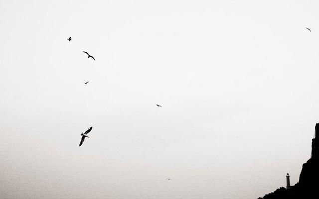 morboso photos on Flickr | Flickr