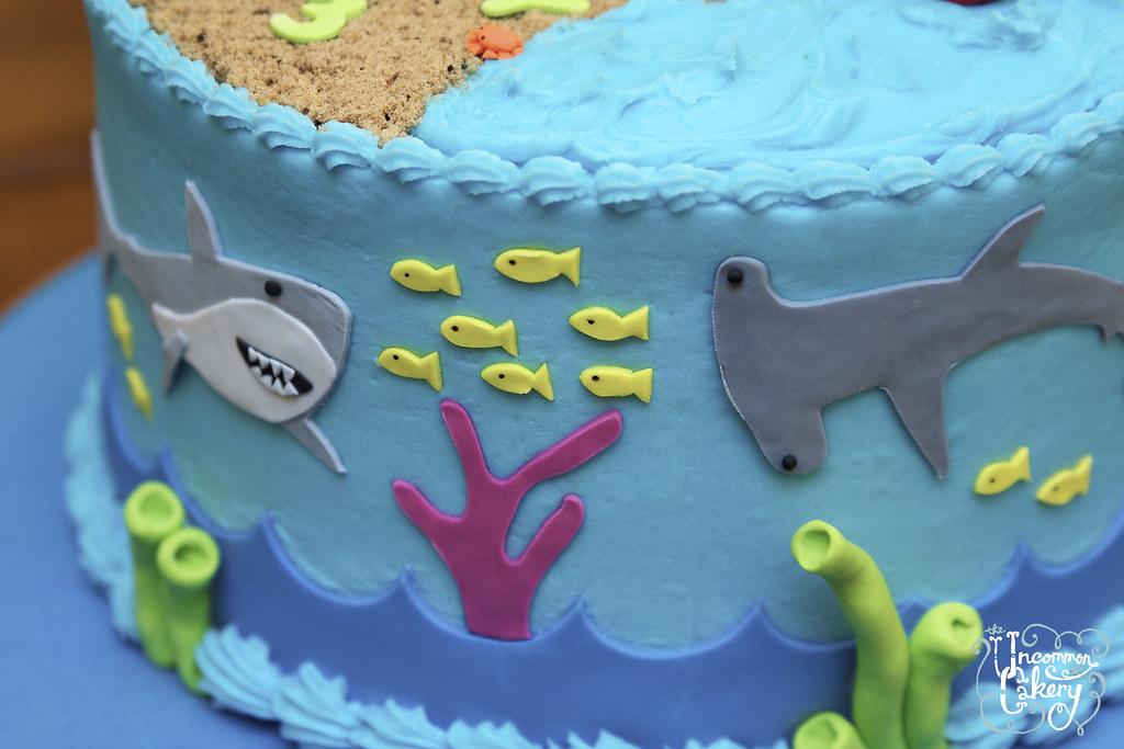 Shark Birthday Cake Instructions - The Best Cake Of 2018