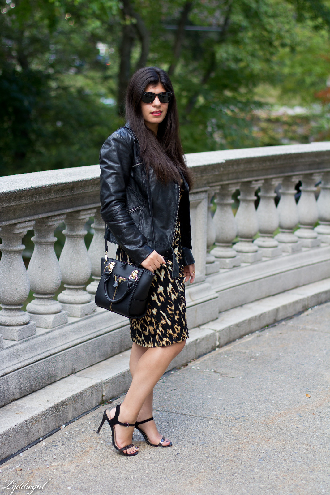 leopard dress, leather moto jacket, strappy heels-2.jpg