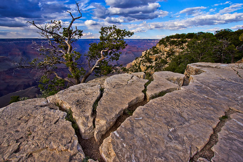 Cracks at the Grand Canyon | by Michael Riffle