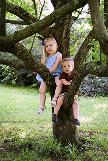 William & Anna in tree | by Stephonthefarm