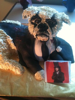 Alice cooper meets griffon dog | by Lisa Templeton