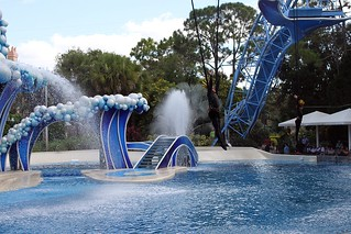 More Water Spraying And Performer In Action At SeaWorld | by Chrisser