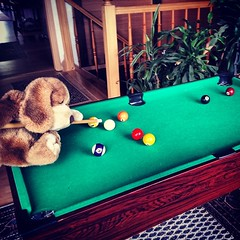 Puppy Sized Pool Table Puppyontour Stuffedanimals B Flickr - Travel pool table