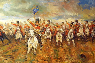 Belgium-6681 - Scots Greys | by archer10 (Dennis) 177M Views