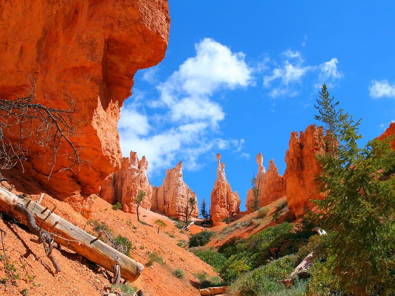 IMG_0227 Peekaboo Trail,