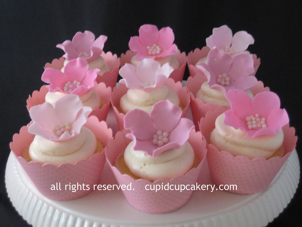 Pink Flower Cupcakes By Cupid Cupcakery Baby Shower Cupcak Flickr