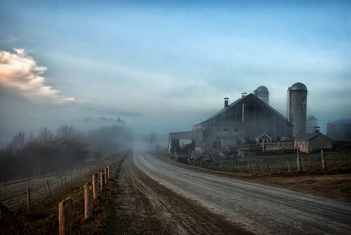 Morning Fog - FP Explore | by angie_1964