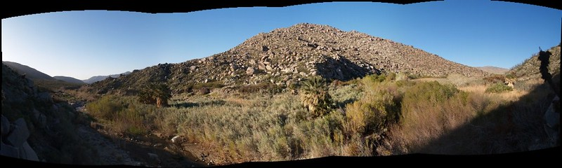 We climbed above the bushes on the east side and took in this panoramic view of Middle Willows