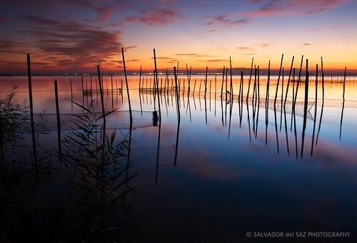 Stillness II | by Salva del Saz