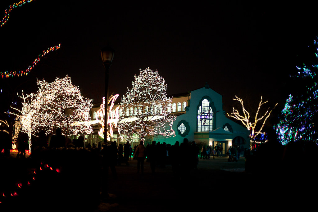 lights before christmas toledo zoo 16 by trustypics - Lights Before Christmas Toledo Zoo