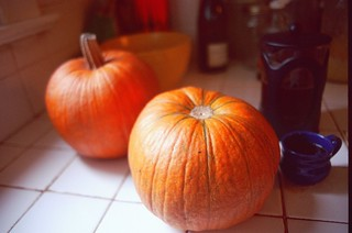 pumpkins and coffee, on my counter, november | by cafemama