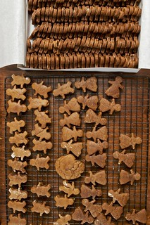 Spicy Gingerbread Cookies | by Chiot's Run