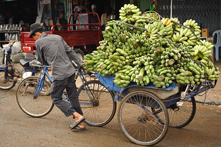 Cambodian Man & Green Bananas on Bicycle | by goingslowly