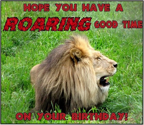 eCard - Birthday -ROARING GOOD | by you get the picture