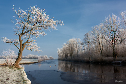 My Favorite Spot at the Polder (Winter) | by Reina Smallenbroek