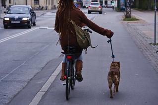 Walking the Copendog | by Mikael Colville-Andersen