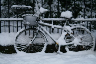 snowing 2010 | by Life is a journey