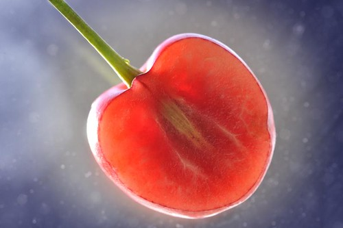 Here is what a cherry looks like when you cut it into thirds and stick the middle third on your window so the sun shines through it. | by J. Star