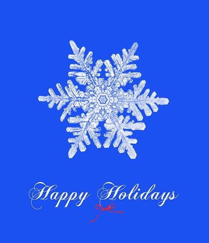 Image Result For Holidays December