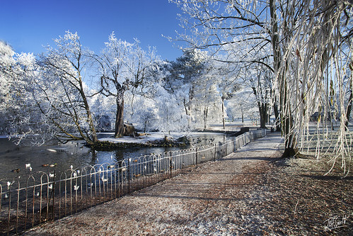 Winter Wonderland at Mary Stevens Park | by JEF 96