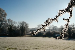 Winter scene near Coventry | by Let Her Bake Cake