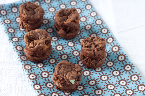 Chewy Brownie Recipe With Cocoa Powder Americas Test Kitchen