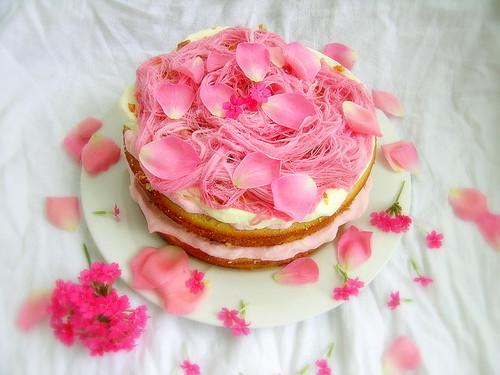 Cake Praline Rose Thermomix