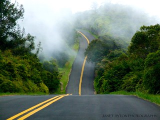 Road To Heaven | by Janet Ayton