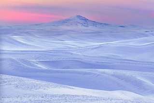 Palouse Winter Pinks | by kevin mcneal