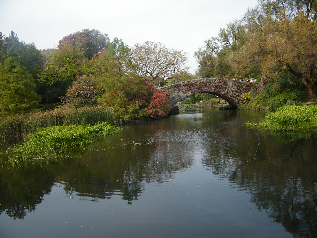 Central Park Bridge and Lake, New York