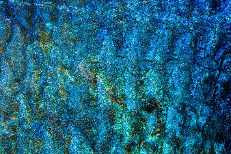 fischschuppen fish scales schuppen by andreas werth wikipedia