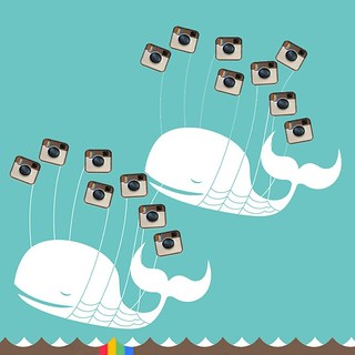 Instagram double fail whale. | by Atomic Playboy