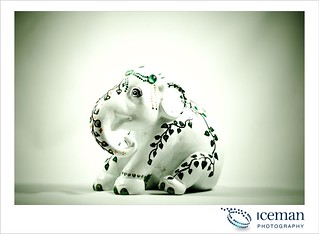 Jade Elephant 004 | by icemanuk