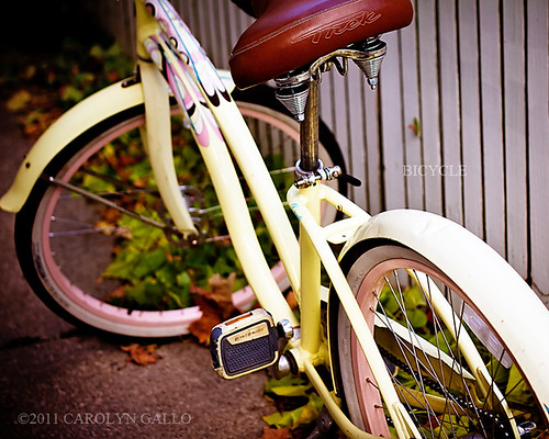 Bicycle | by Carolyn Gallo