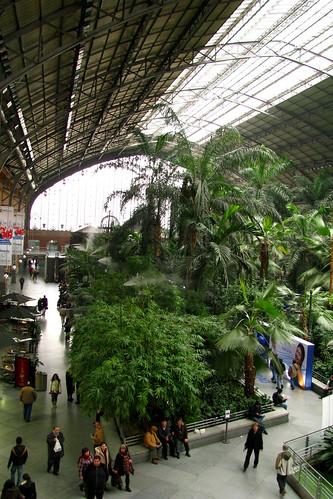 Jardin tropical de atocha 5 madrid jard n tropical de for Jardin atocha
