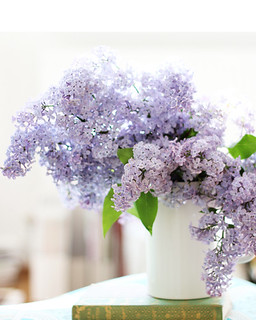 Gee lilacs are pretty | by decor8