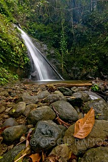 Ilocos Norte - Cabacan Falls and Leaf II | by lagal[og]