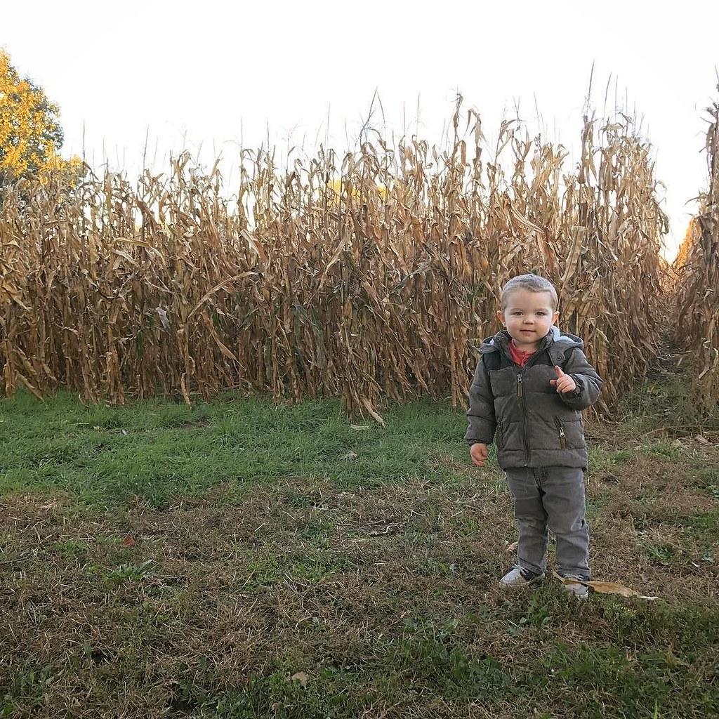 Ezra and some corn before harvest. // #ezrayuuto #boystownliving