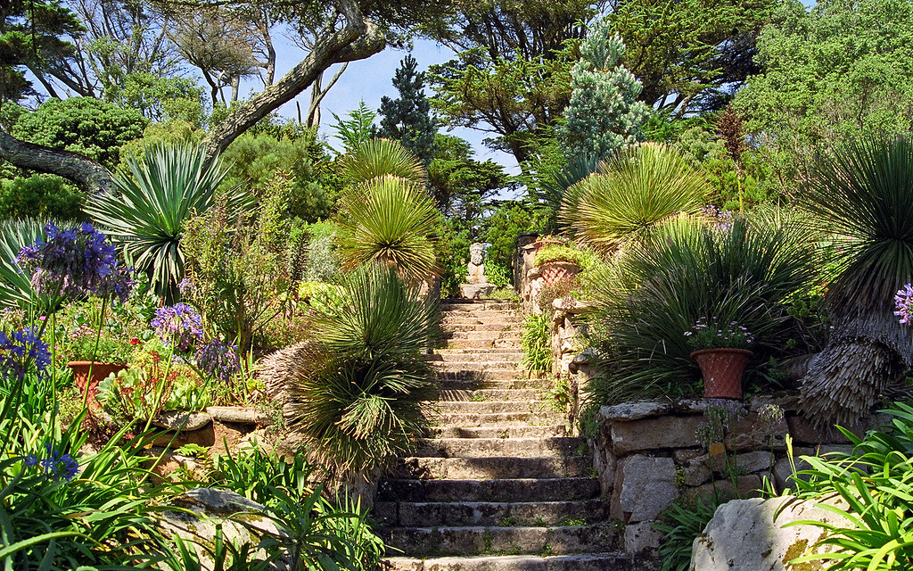 ... Tresco Abbey Gardens, Scilly Isles, UK | View Of Neptune Steps In This  Superb
