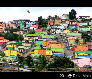 Coloridas / Colorful | by Drica Melo - DM