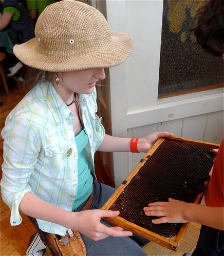 Touching a beehive | by Museum Girl Sarah