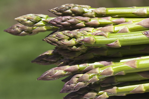 first asparagus | by Muffet