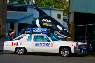 Whale On Boston Cruiser | by bigsnit