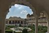 Jaipur - Amber Fort garden