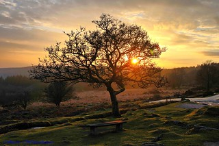 Cross Gate Sunset. Burrator.Dartmoor. | by spw6156 - Over 5,800,032 Views